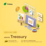 Senior Treasury
