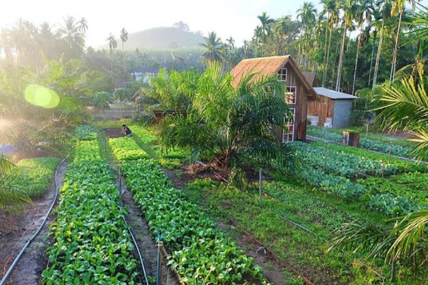 Farmstay là gì? 4 Lưu ý cần biết trước khi đầu tư Farmstay